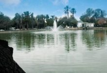 Photo of Tunis : Parc du Belvédère : réouverture imminente