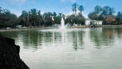 Photo of Tunis : Parc du Belvédère : réouverture imminente