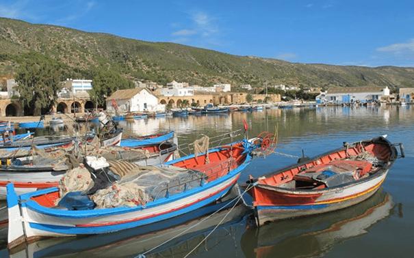 WWF : étude pour mettre fin au dessèchement de la Sebkhet Sidi Ali à Bizerte