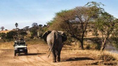 Photo of PROMOUVOIR LA « MARQUE AFRIQUE » POUR MATÉRIALISER LE POTENTIEL TOURISTIQUE DU CONTINENT